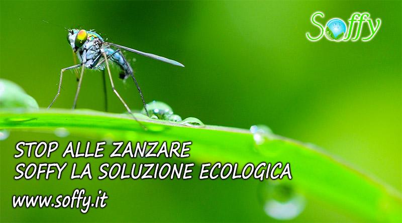 RImedi contro le zanzare in giardino